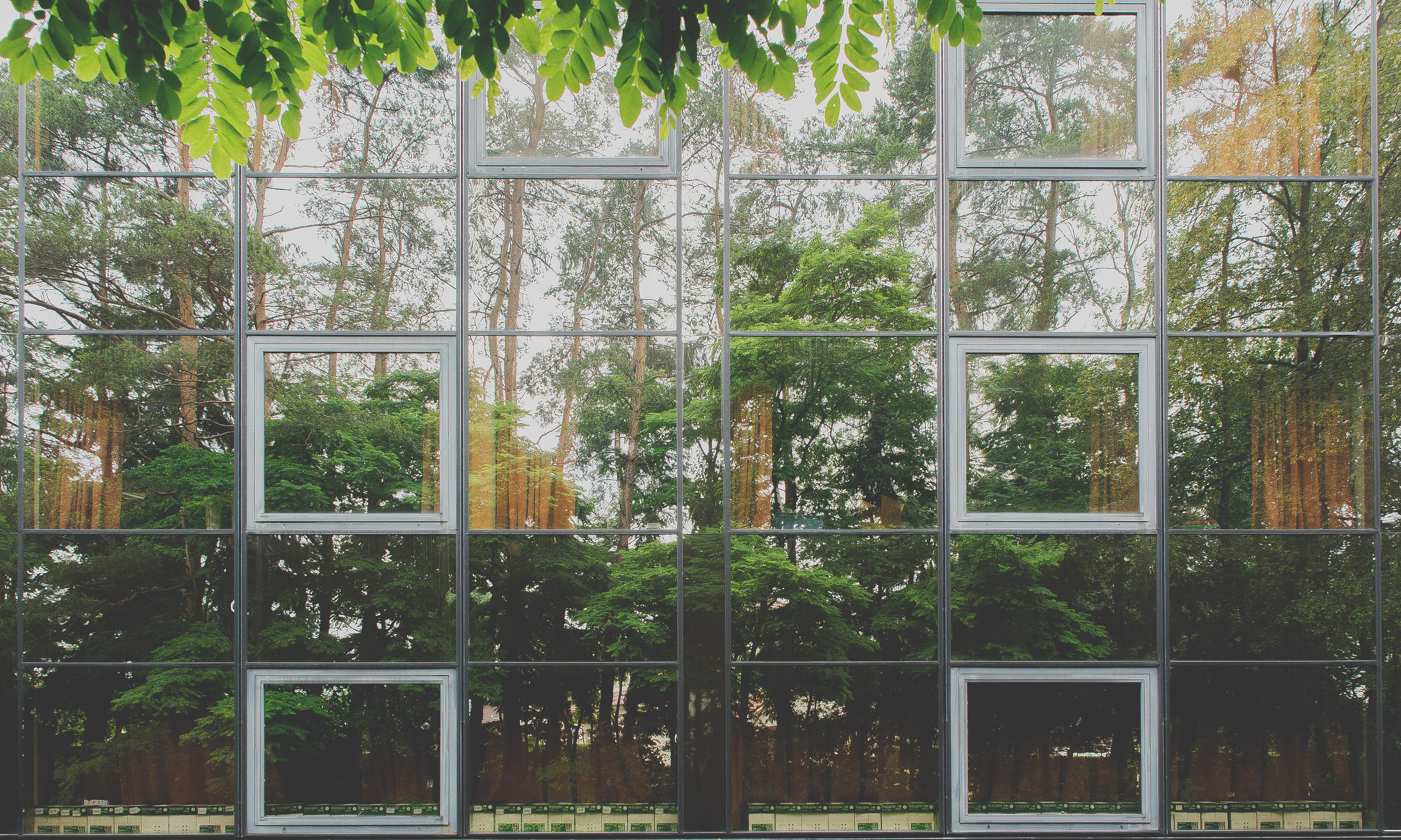 Franky Larousselle – Tussen zicht en zien #1