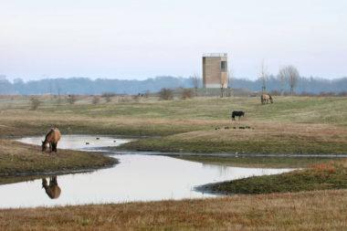 Ruimtelijke kwaliteit in Limburg