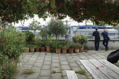 Coöperatief wonen in Vlaanderen – lessen uit Zürich
